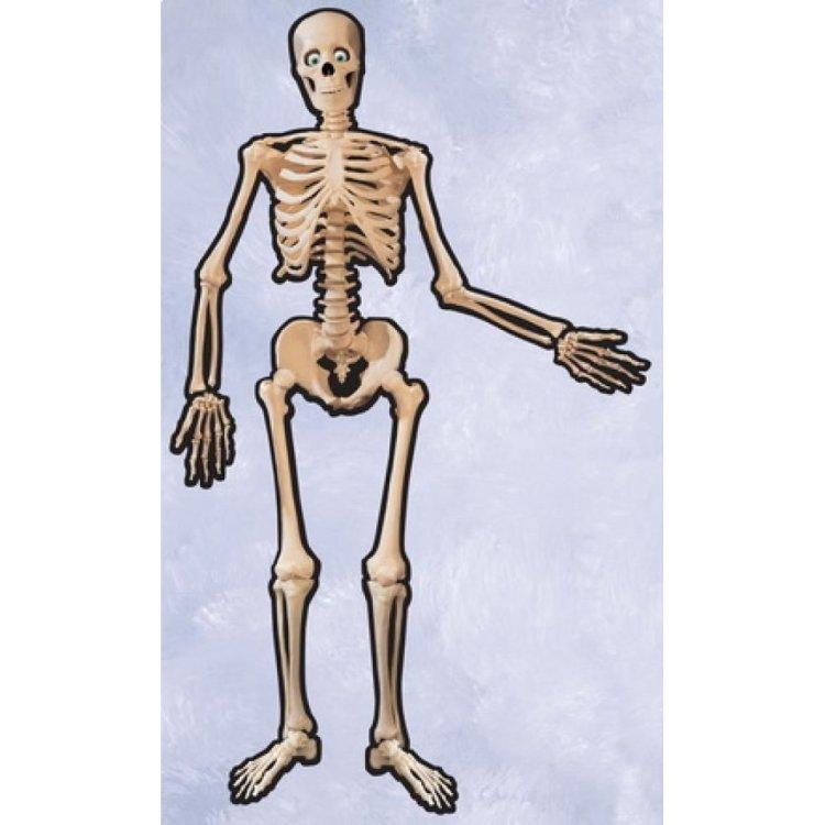 Διακοσμητικό τοίχου Σκελετός